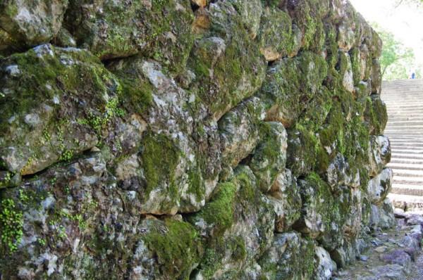 杉の段の石垣