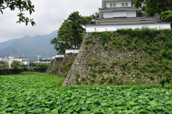 石垣が幾重にも折れており、大手口の防御の要となっている