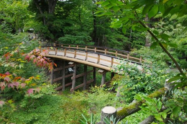 本丸を囲む空堀の上に架かっている橋