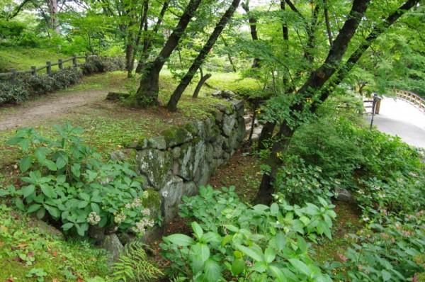 左側(曲輪の南)は深い堀切の木谷になっている