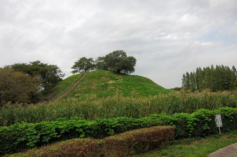 石田治部の本陣があった丸墓山古墳を中心に石田堤が築かれた