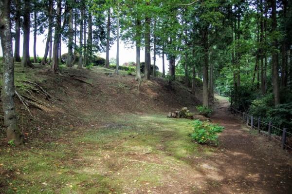 御馬場曲輪西堀を掘って出た土で土塁を造った跡