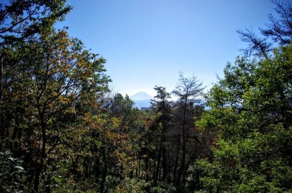往時も、このように富士山を眺めたのだろうか・・・