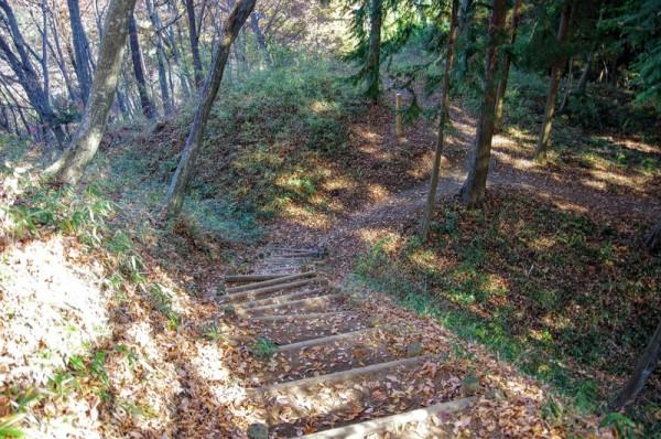 二の丸と本丸の間、斜め下へ向かって竪堀が走っていた