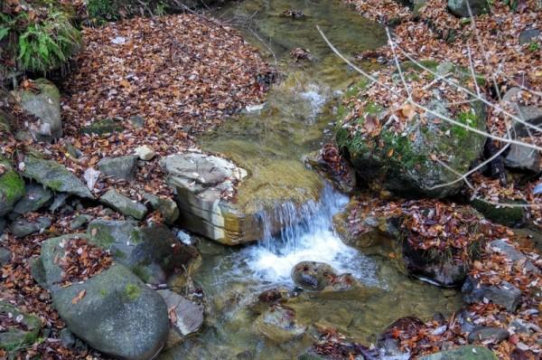 この渓流の先にある吾妻川は利根川の支流でありながら一級河川である