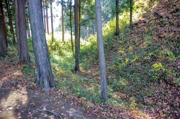 麓まで走る二の丸の二つ目の竪堀で、右手の土塁が本丸