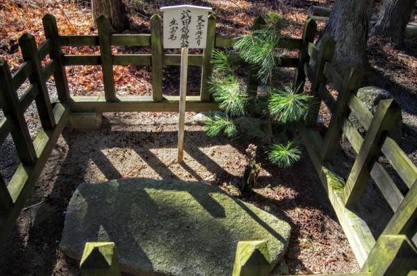 甲斐武田家の第21代当主で、戦国大名として最後の当主となった