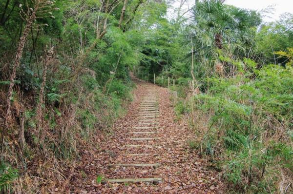 公園の東側出入口から続く登城道の先は腰郭に至る