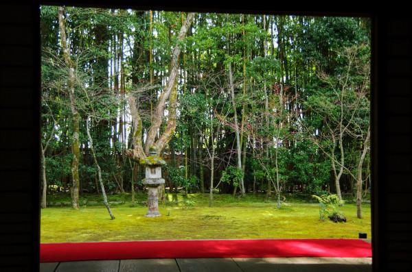背後には竹林、手前は苔生した地に楓が数本植えられ、中央に春日燈籠が置かれた簡素な趣を醸し出している