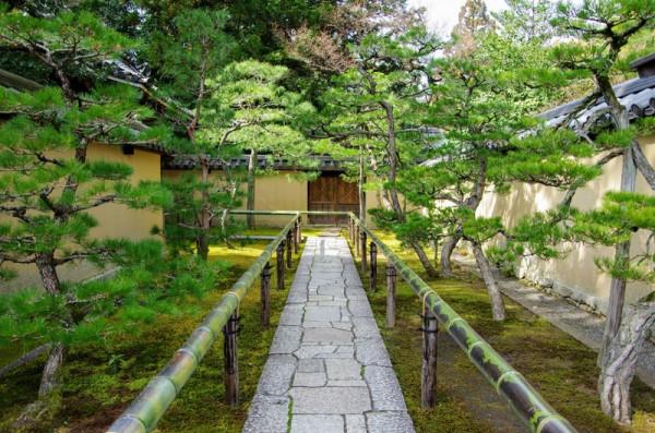 肥後細川家の菩提寺である高桐院の参道は大判の切石が敷かれ両脇に赤松の列植が続く