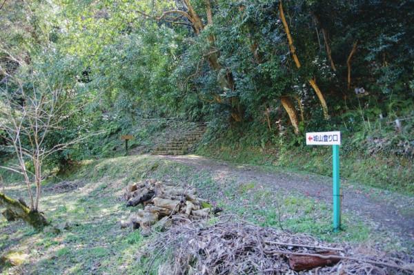二の丸跡から内膳丸・本丸方面へ登る公園の散策路が整備されていた