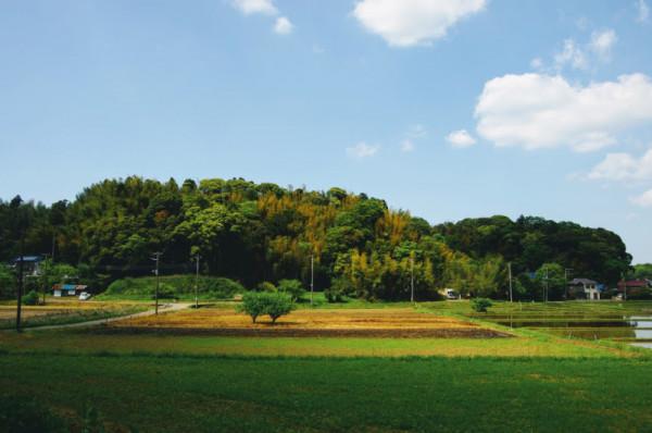 半島状台地上に築かれた本佐倉城は三方が湿地帯に囲まれた要害だった