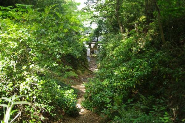 この切通しの先には石室観音と登城口がある
