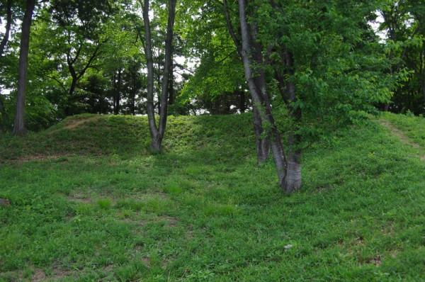 この土塁の上には櫓が建っていたと考えられている