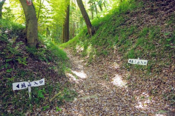 大堀切の木戸跡を過ぎた所にⅠ郭とⅡ郭の分岐点がある