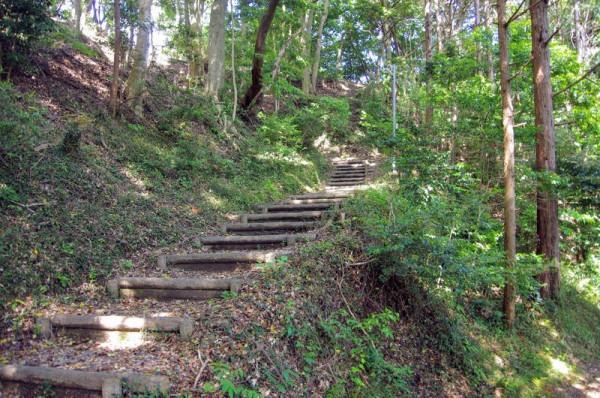 急坂ではあるが、階段など整備が行き届いていた