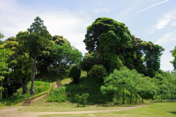 北の丸川に面した松尾山の西斜面には遊歩道用の階段があった