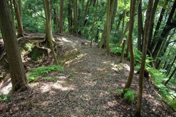 大手曲輪側から見返した土橋で、左手は三日月堀、右手は急崖である