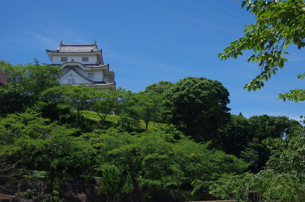本丸は急斜面の高台にあり、周囲には土塁が設けられていたので、このようにはっきりと見えなかったかもしれない
