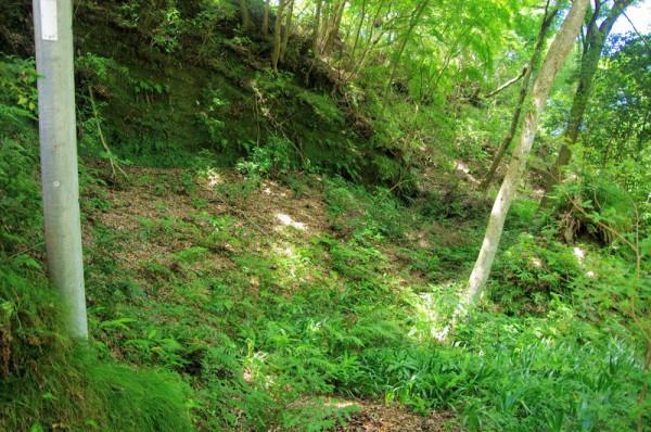 大多喜城の西側の守りに空堀が多く作られているらしい