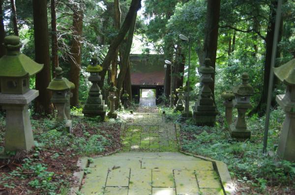 随神門から続く長い石段上から見下ろしたところ