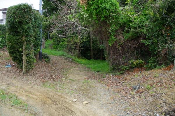 このまま正面の山路のように見える坂を下っていくと祝田坂らしい