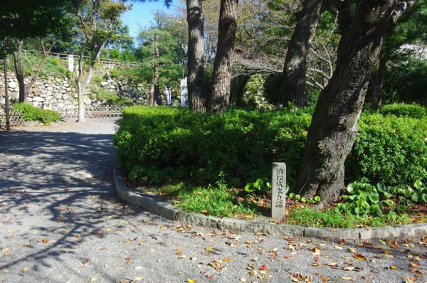 奥に見えるのが本丸石垣で、東半分が浜松城公園として整備されていた