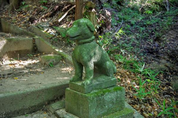 狛犬は高野山犬飼明神社にあやかって日本犬になっている