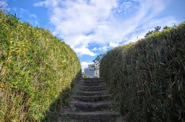 土塁から下へ降りるための階段