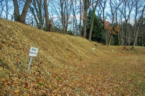土塁は長方形をした本郭の外周を巡っていた(南側を除く)