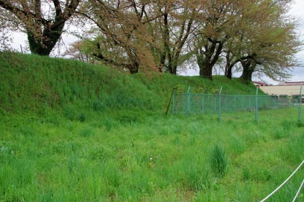 土塁の手前が外堀で、発掘調査では畝堀が検出された