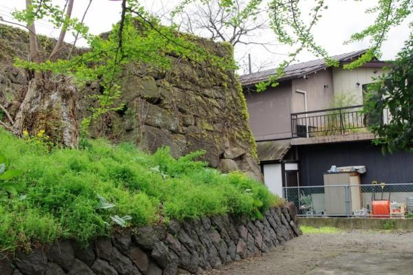自然石を組み合わせた野面積みである