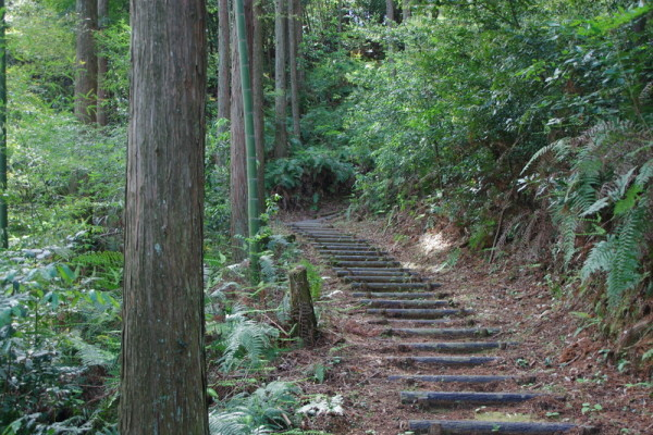 大手口から階段を登って東曲輪跡へ向かう