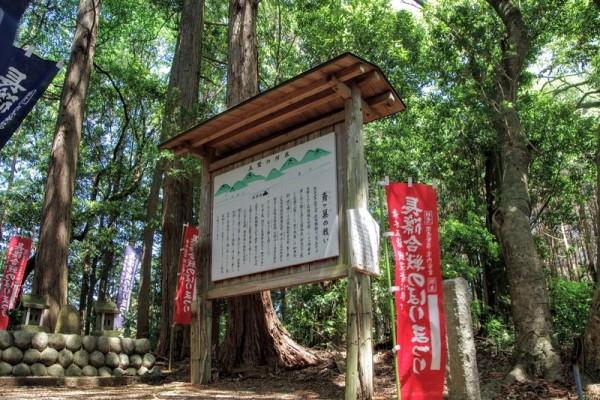 乗本側に鳶ヶ巣山砦を含む五つの砦を築き長篠城包囲の一環とした