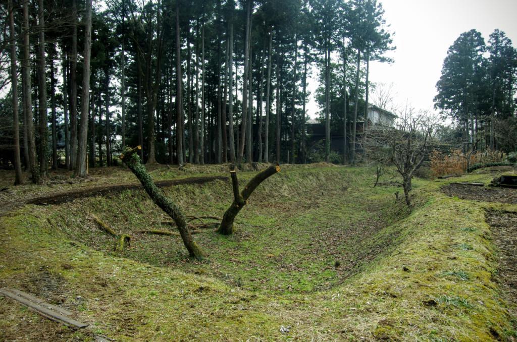 正面奥の大手口から続く空堀(8号堀)を境に、左手奥が馬出、手前が土橋、右手に曲輪IIIが配置された城址南側の守備施設である