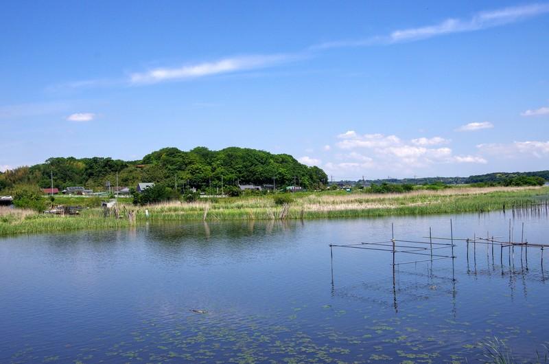 師戸城は利根川下流に形成された印旛沼の中に浮かんでいるように見えた