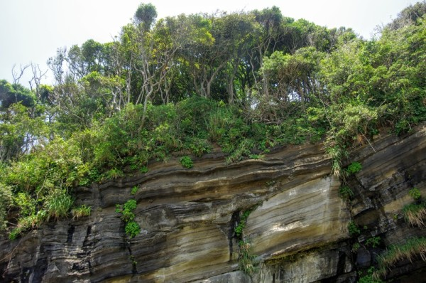 往時からゆっくりと時間をかけて隆起した岩盤の上が主郭跡