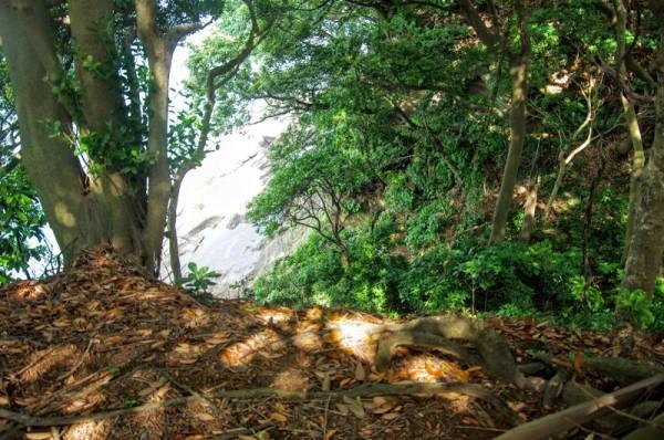 比高20mほどの急斜面な崖であるが、右手に横堀が残っていた