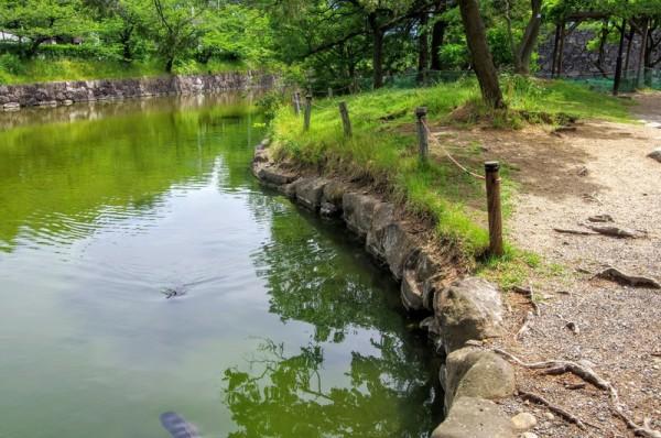 松本城になると若宮八幡跡は辻馬出として機能していたらしい
