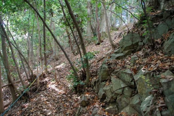急斜面の場所にはロープ場が設けられていた