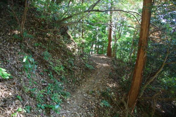 駒冷やし場から無名丸・本丸跡の南側をトラバースする登山道