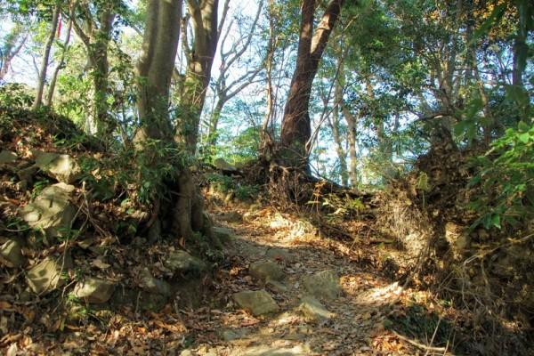 詰城虎口の周辺もたくさんの石が散乱していた