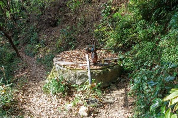 手押しポンプで水を出すことができたが、飲料水としてはNGとのこと