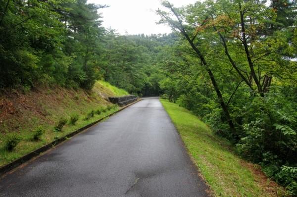三曲輪跡へ続く登城道で、左手上が白鳳三山の一つである羽黒山