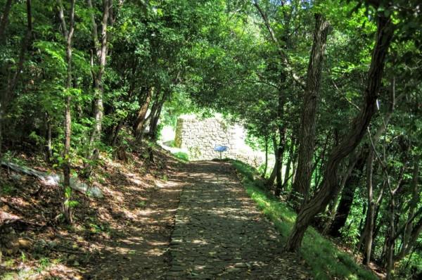 石敷きの西矢倉台通路を東へ向かうと物見台下虎口が見えてくる
