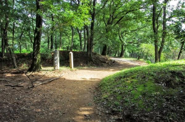 この先にある西城への食い違い虎口で土塁には石垣が残っていた