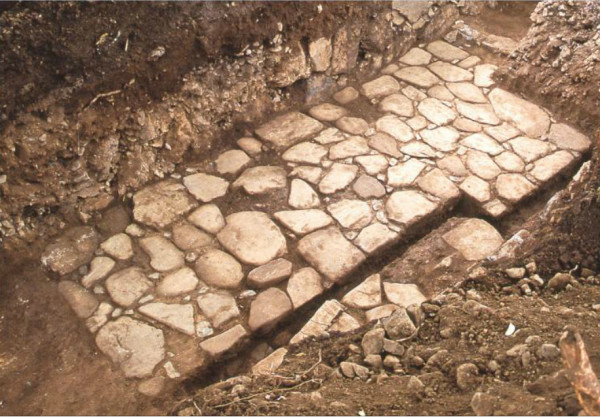 城跡から発見された石畳(佐野市教育委員会より)