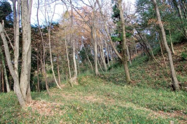 右手奥が金毘羅社が建つ本丸跡(北側)、右手前上が本丸跡(南側)