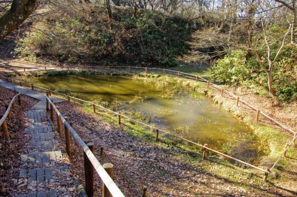 掘跡には池があった