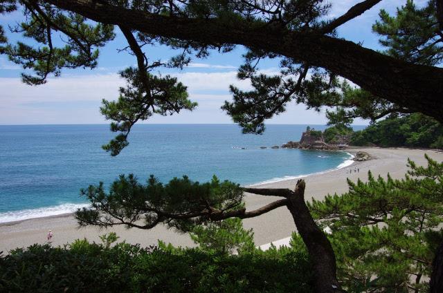 桂浜(本浜)
